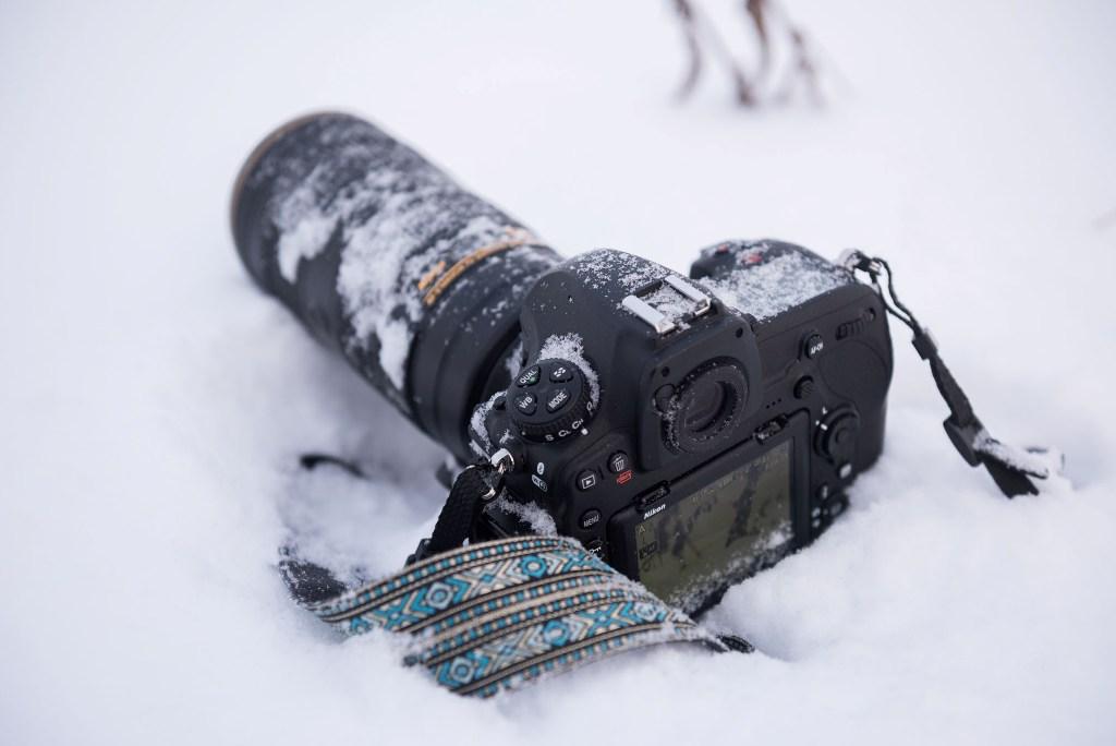 универсальны подойдут техника фото на зеркалку зимой нашем
